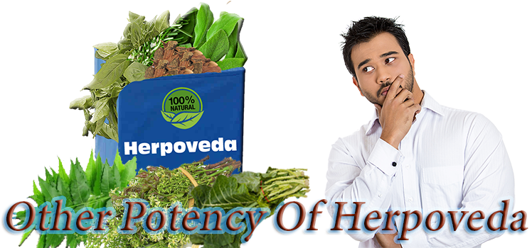 reviews of herpoveda